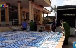 Bắt giữ vụ vận chuyển gần 300.000 khẩu trang y tế tại Tây Ninh
