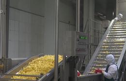 Doanh nghiệp xuất khẩu nông sản chủ động thay đổi để thích ứng