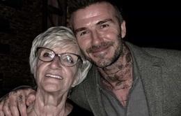 David Beckham dành những lời ngọt ngào cho mẹ