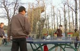 Cư dân Bắc Kinh phấn chấn khi nỗi lo dịch bệnh lắng dịu