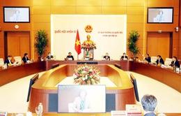 Ủy ban Thường vụ Quốc hội cho ý kiến vào một số dự án luật