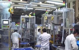 90% doanh nghiệp tại Hồ Bắc, Trung Quốc nối lại hoạt động sản xuất