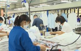 Hạn chế cắt giảm lao động trong giai đoạn dịch bệnh
