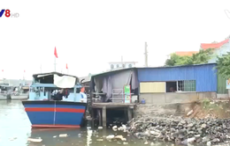 Quảng Ngãi chỉ đạo xử lý các công trình lấn chiếm sông Sa Kỳ