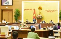 Nỗ lực hoàn thành nhiệm vụ của Quốc hội trong dịch COVID-19
