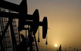 Giá dầu tăng nhẹ trước thông tin tích cực về gói tài chính của Mỹ