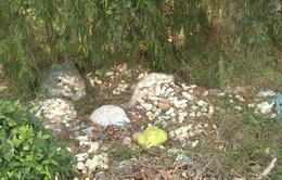 Đổ trộm rác thải độc hại gây ô nhiễm môi trường