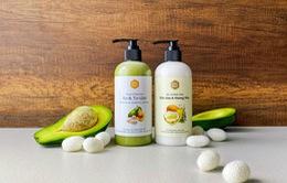 Top 6 nguyên liệu thiên nhiên tốt hàng đầu cho mái tóc nhuộm đều có trong dầu gội dưỡng nhuộm Mộc Nhu