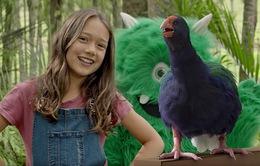 Loài chim quý hiếm của New Zealand xuất hiện trong video hướng dẫn an toàn bay mới