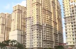 Ngân hàng chào bán công khai 65 căn hộ chung cư ở TP.HCM