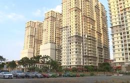 TP.HCM: Ngân hàng đấu giá 65 căn hộ chung cư