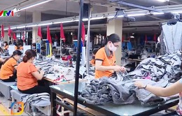 DN Việt nỗ lực tìm nguồn cung nguyên liệu đầu vào