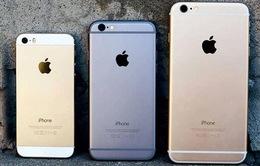 Apple phải bồi thường 500 triệu USD vì làm chậm iPhone đời cũ