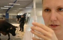 Mô hình HTX nông nghiệp tại Đan Mạch có gì khác biệt?