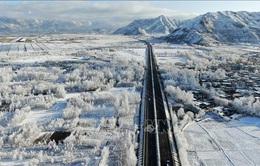 Trung Quốc: Tây Tạng trải qua mùa Đông lạnh nhất trong 20 năm
