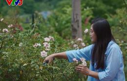 Biệt thự hoa hồng của nhà thiết kế áo dài Lan Hương