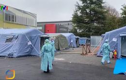 Các nước hưởng ứng tuyên bố của WHO đẩy mạnh chống dịch COVID-19