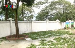 Giông lốc, mưa lớn làm 3 người thiệt mạng