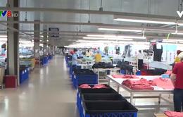 Thừa Thiên - Huế tháo gỡ khó khăn cho ngành dệt may do dịch Covid-19