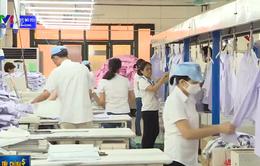 WB dự báo Việt Nam tăng trưởng 4,9% năm nay
