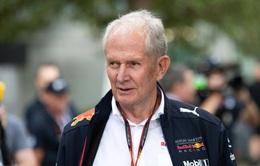 Cố vấn đội đua Red Bull nhận chỉ trích sau phát ngôn thiếu suy nghĩ