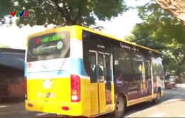 Tạm dừng một số tuyến xe buýt nội thành và tuyến Đà Nẵng - Quảng Nam