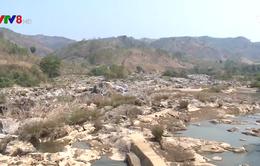 Thủ tướng Chính phủ chỉ đạo kiểm tra phản ánh liên quan đến dự án thủy điện Thượng Kon Tum