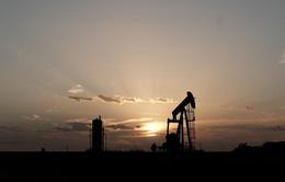 G20 cam kết ổn định thị trường dầu