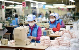 Bộ Công Thương thông tin về việc sản xuất và xuất khẩu khẩu trang