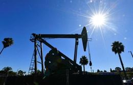 Trung Đông cảnh báo viễn cảnh bất ổn của giá dầu