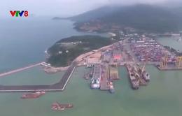Đà Nẵng xin cơ chế kêu gọi doanh nghiệp cùng đầu tư xây dựng cảng Liên Chiểu