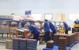 Doanh nghiệp thực phẩm tăng mức sản xuất đáp ứng đơn hàng
