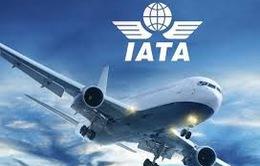 IATA: Doanh thu ngành hàng không sẽ giảm khoảng 55% trong năm 2020