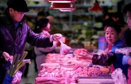 Trung Quốc nhập khẩu thịt lợn gấp 3 lần