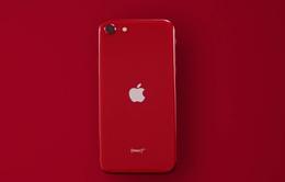 CHÍNH THỨC: Apple ra mắt iPhone SE giá rẻ mới