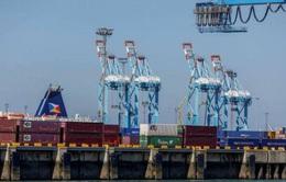 Hàng hóa châu Á đối mặt với nguy cơ mắc kẹt tại các kho cảng châu Âu