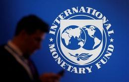 IMF: Dịch COVID-19 đe dọa nghiêm trọng sự ổn định tài chính