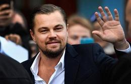 Leonardo DiCaprio mời fan đóng phim chung