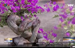 Bông giấy bonsai - ngã rẽ cho làm giàu.