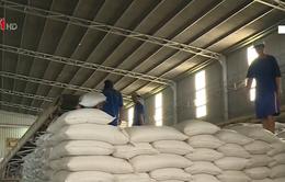 Bộ NN&PTNT kiến nghị tiếp tục cho xuất khẩu gạo nếp
