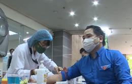 Trung ương Hội Liên hiệp Thanh niên phát động hiến máu tình nguyện