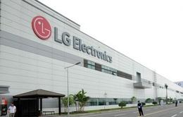 Thua lỗ, LG Display cắt giảm hàng nghìn nhân sự