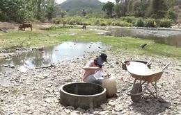Người dân Ninh Thuận thiếu nước sinh hoạt nghiêm trọng do khô hạn