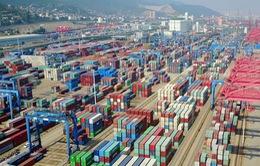 Tăng trưởng kinh tế Trung Quốc suy giảm lần đầu trong nhiều thập kỷ