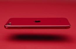 Người dùng Trung Quốc chê iPhone SE mới
