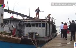 Khó hoàn thành lắp đặt máy giám sát hành trình tàu cá