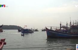 Quảng Ngãi tăng cường kiểm tra thiết bị giám sát hành trình tàu cá