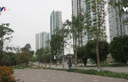 Nhiều đô thị sạch hơn trong mùa dịch