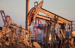 Giá dầu tiếp tục xuống mức thấp kỷ lục 21 năm