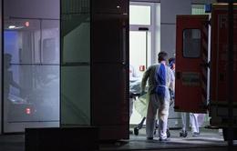 Đức trả chi phí điều trị cho các bệnh nhân COVID-19 đến từ các nước EU